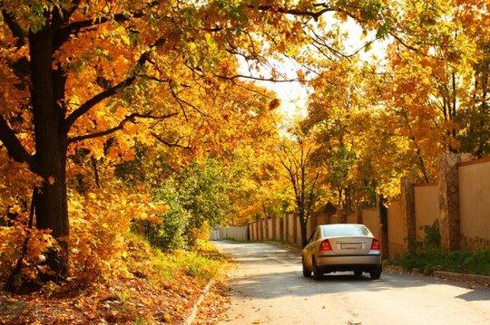 Abordez l'automne et l'hiver en toute sécurité